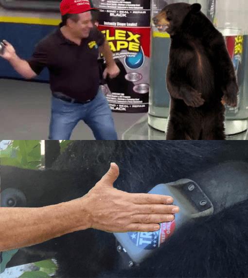 trump bear 2