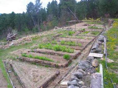 aime-jardinage06-jardins-pluriel-laurac