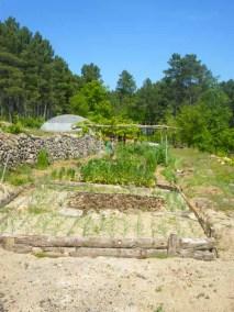 aime-jardinage08-jardins-pluriel-laurac