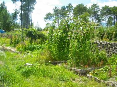 aime-jardinage15-jardins-pluriel-laurac