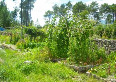 Jardins collectifs à Laurac, Rosières et Vernon