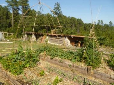 Maison Aime - atelier jardinage