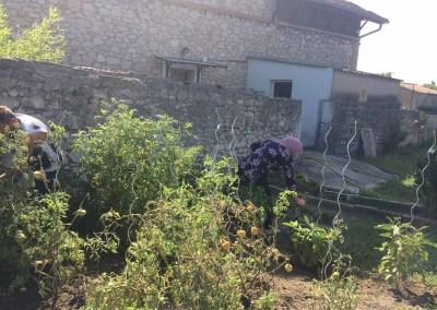 Jardinage Bourg-Saint-Andéol – 2016