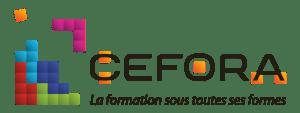 Logo et lien INFREP