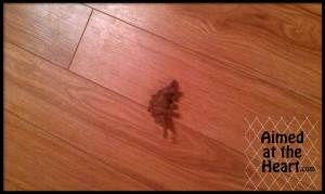 Brave Mice, Scared Mama