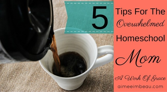 Are you overwhelmed with homeschooling? It is easy to lose our focus when we are trying to meet so many needs. I want to remind you of 5 essential ways to prevent feeling overwhelmed. These tips are suitable for everyday Christian living and Christian motherhood as well.