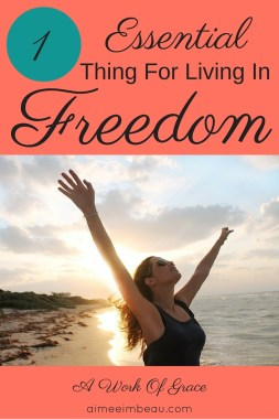 Living in the freedom of Christ is a lot of work. Especially if you have a vault of horrible secrets like I did. It can be overwhelming knowing where to start healing, what to 'deal' with first. If there is 1 Essential Thing For Living In Freedom, it is knowing whose we are.