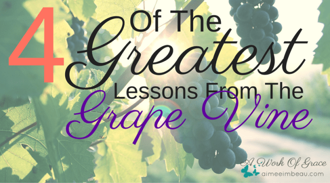 Sometimes the best lessons are taught by an experience. My husband and I sure learned a lot this fall when our grape vine failed to produce fruit. I immediately thought of how this related to Jesus being the vine and me being a branch. I want to be sure I am producing fruit...and sometimes that means pruning! 4 Of The Greatest Lessons From The Grape Vine.