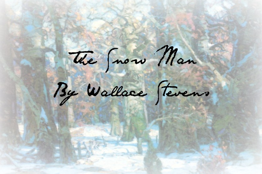 Snow man cover