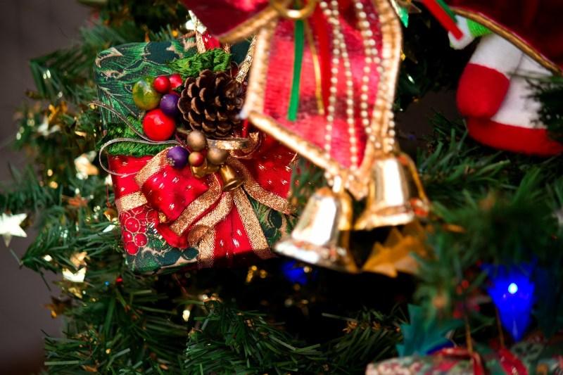 田舎のクリスマスやお正月の過ごし方を都会と比べてみたin高知