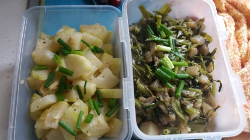 hairy gourd and eggplant with water spinach