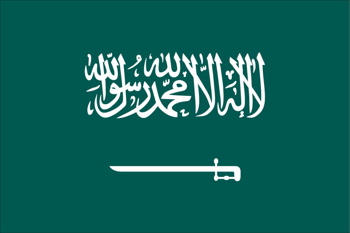 ترجمة الى العربية/Arabic