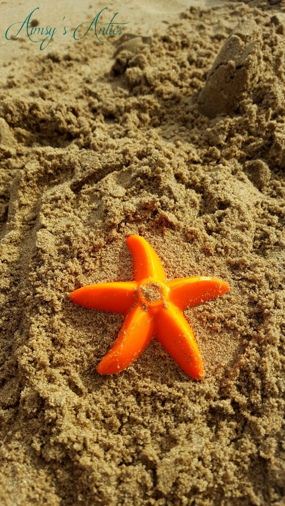 Starfish cut out shape in the sand
