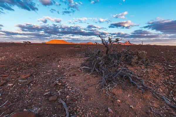 Finish superb pentru Iulian Rotariu la ultramaratonul din desertul Namib