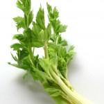スッキリ セロリとアサリの和風スープパスタ・栄養分を無駄なく食べるレシピ・コウケンテツ