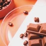 サラミチョコレートのレシピ