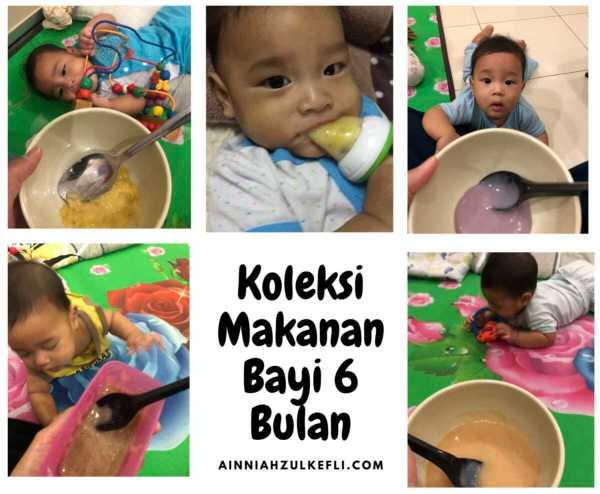 resepi makanan bayi 6 bulan