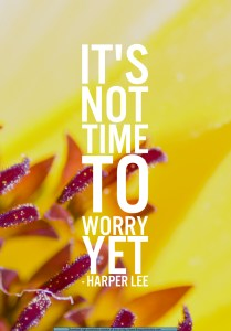 Not time to worry_6