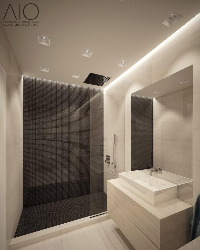 Amenajare_Birouri_Perceptron_-_Design_Interior_Cluj-Napoca_-_Randari_(1)