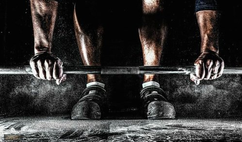 Gaining muscles_Hypertrophy training