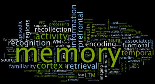 word cloud_memories_article