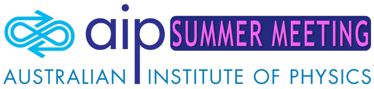 AIP Summer Meeting 2019