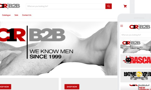 Channel 1 Releasing Launches State of the Art B2B Website