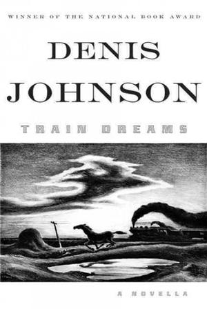 Dueling Book Review: The Sisters Brothers vs. Train Dreams