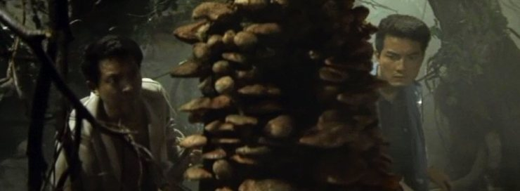 matango-attack-of-the-mushroom-people-mushrooms