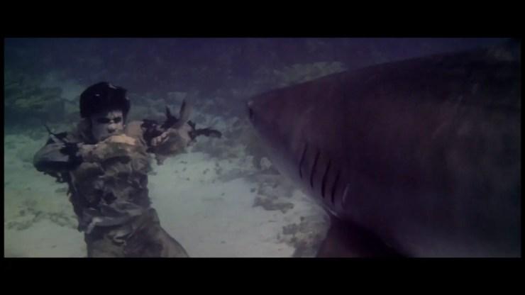 zombie-shark-fight