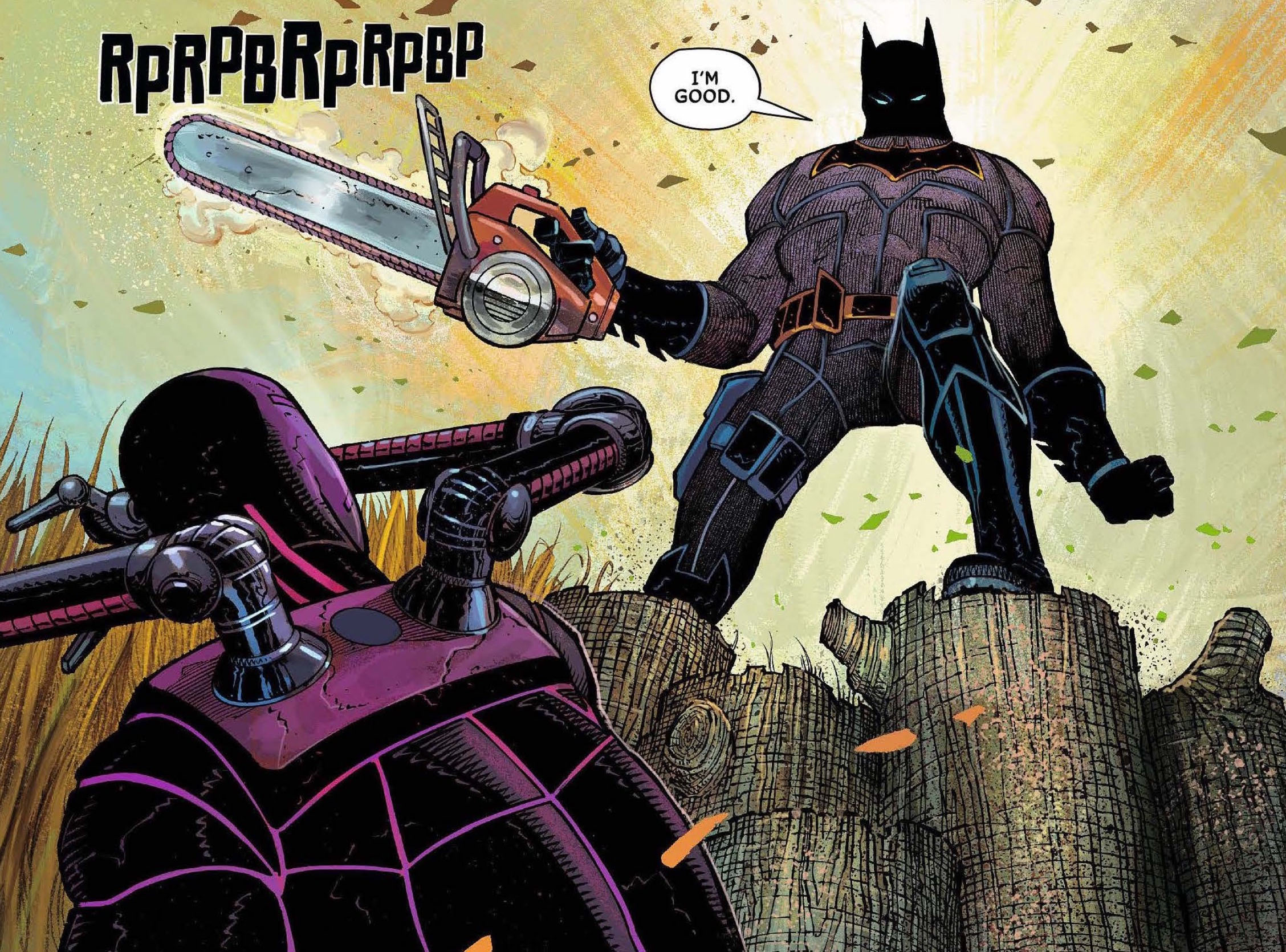 All-Star Batman Vol. 1: My Own Worst Enemy Review