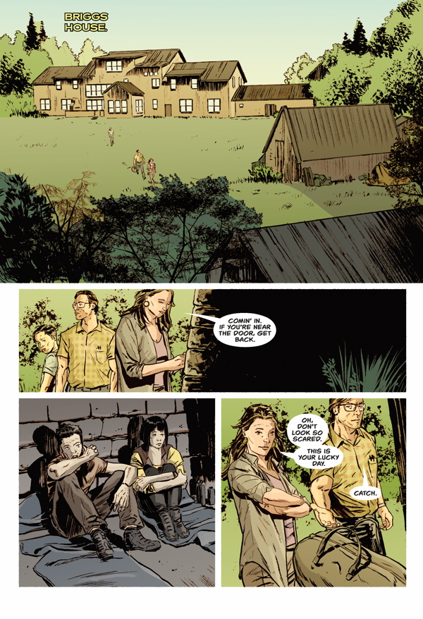 Briggs Land: Lone Wolves #3 review