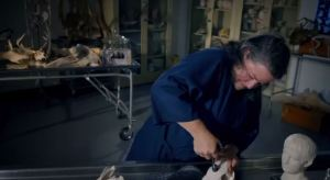 Science Channel's 'Mythical Beasts' sheds light on demon origins