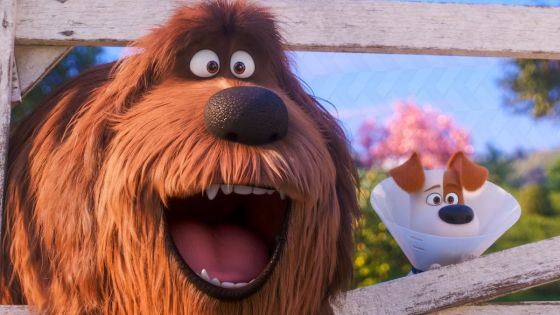 So I never saw the first Secret Life of Pets film, but I figured it wasn't too important to have seen it to see this one. This sequel and works because of it's constantly upbeat energy and consistently funny writing. The characters are so unbelievably lovable too, which is an absolute must with these types of films. Not having seen the first film, and my dislike for some of the Illumination films, like Minions, did cause some apprehension as I went into this, but I'm glad I gave this one a chance.