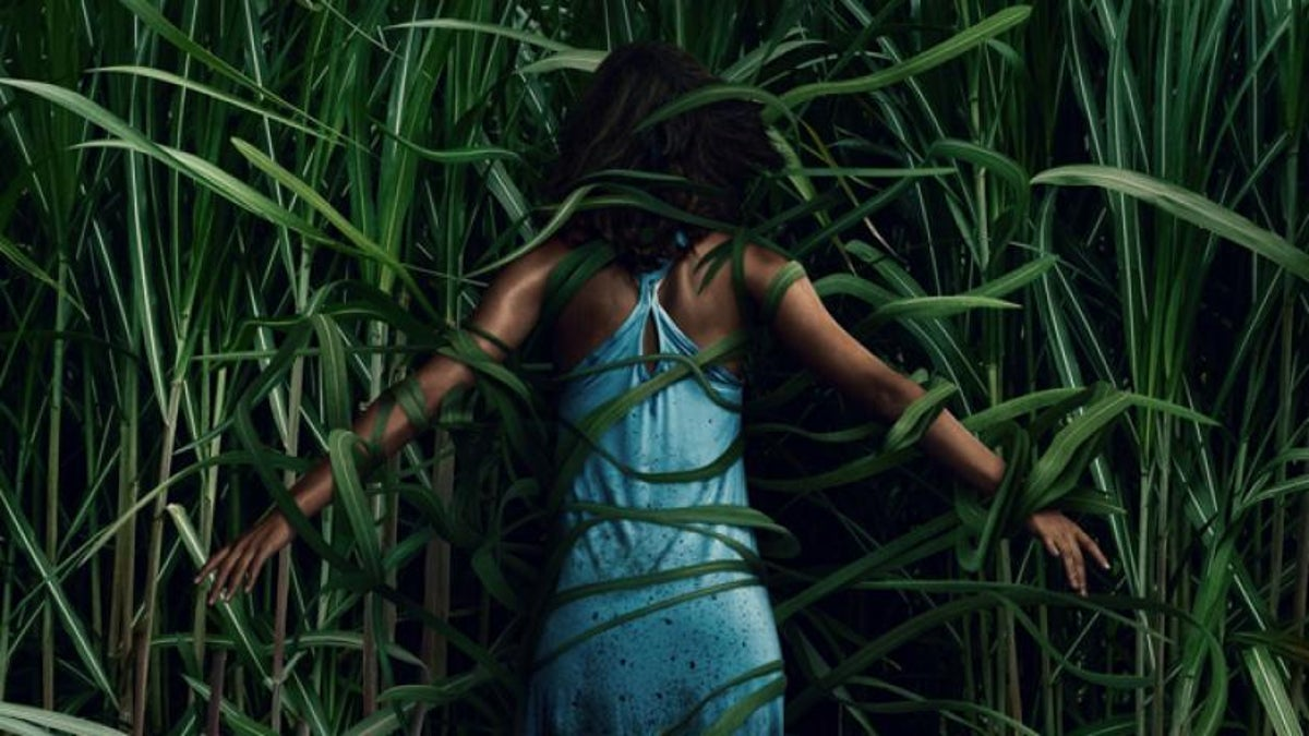 Fantastic Fest: In the Tall Grass Review: A trippy horror movie that delves deep