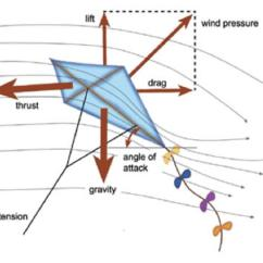 Paper Airplane Diagram Of Parts Ford Cortina Wiper Motor Wiring How Kites Fly National Air And Space Museum