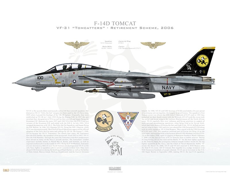 Aircraft profile print of F-14D Tomcat VF-31 Tomcatters