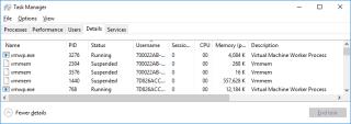 Hyper-V Processes on Host