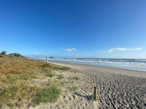 Read more about the article Freedom Camping in New Zealand