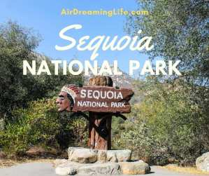 14 Things to See and Do in Sequoia National Park