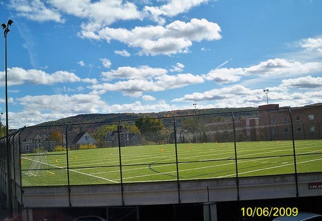 Artificial grass, synthetic grass, fake grass, green roof