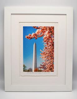 2018 Cherry Blossom Custom Framed Print Image
