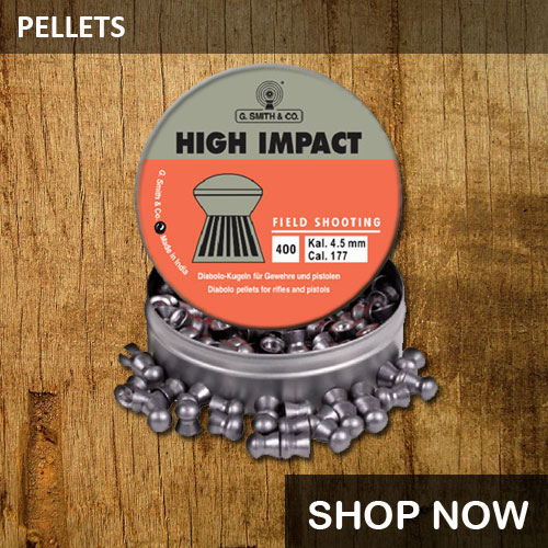 Airgun pellets price