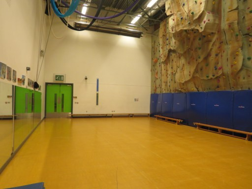 A wide shot of the studio showing a brown floor, mirrors on the left hand side, and a climbing wall on the right. Aerial equipment just appears from the roof.