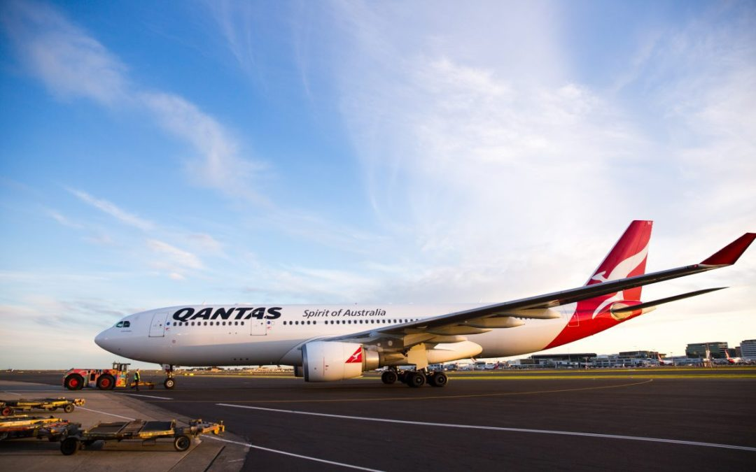 Qantas thrives on domestic recovery