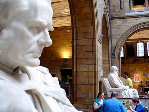 Huxley and Darwin in the cafe at the British Museum; temporary posts for both of them, during some renovations, it turned out -- update 2015. Photo from Airminded.