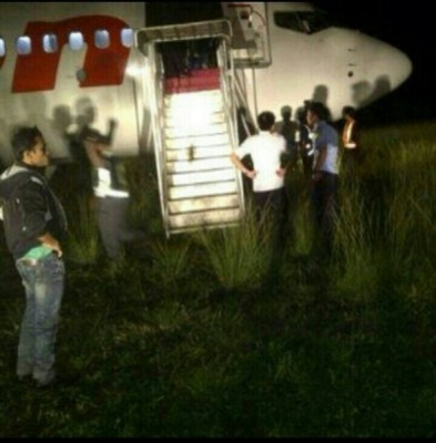 Lion Air 737 after hitting cows