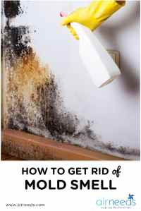 How To Get Rid Of Mold On Bathroom Ceiling ...