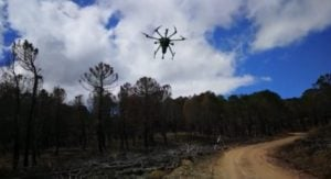 spanish researchers deploy drones to improve wildfire prediction Airplane GEEK Spanish Researchers Deploy Drones to Improve Wildfire Prediction