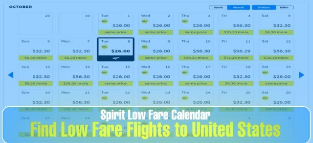 Spirit Low Fare Calendar: Flight Deal Finder +1-877-681-0056- All you need to know